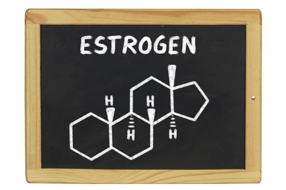 Estrogen written on blackboard