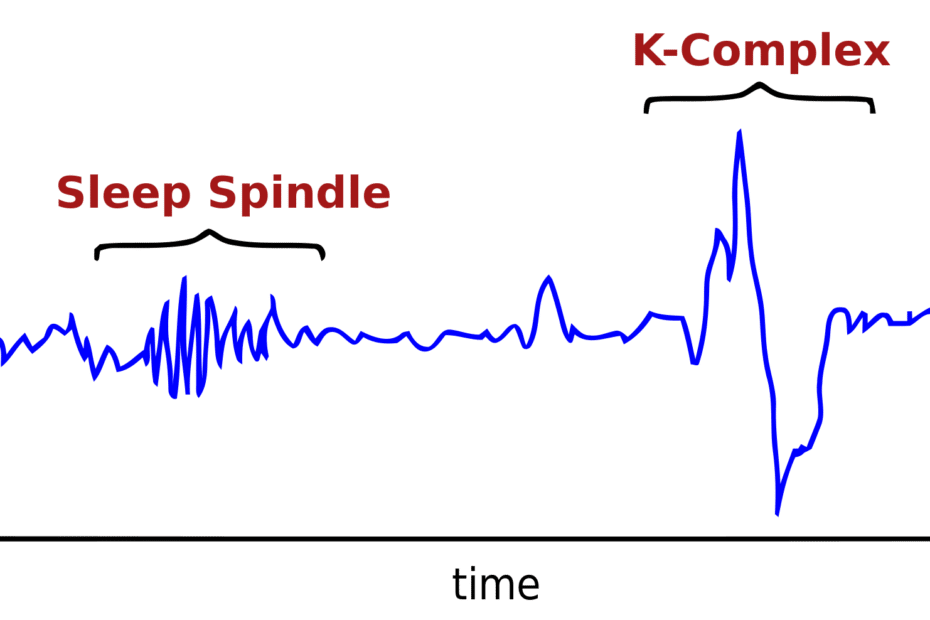 sleep spindles graph