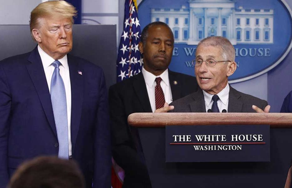 Dr. Fauci stands next to Trump during a press conference