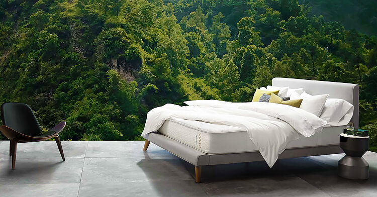 Latex mattress in a forest setting
